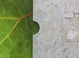 Presentamos el Reporte de Sostenibilidad 2014 de Tropicalia