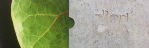 Tropicalia_informe_sostenibilidad