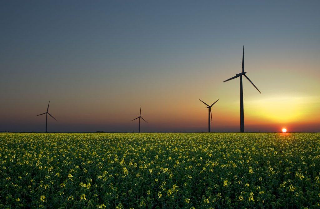Apuesta por las energías limpias
